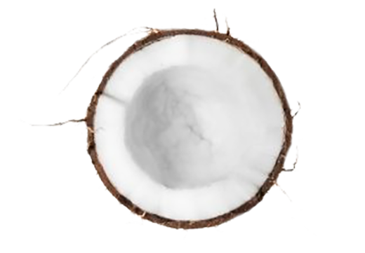 Organic Fractionated Coconut