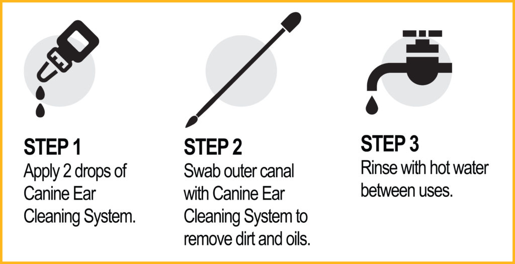 canine ear cleaning system steps