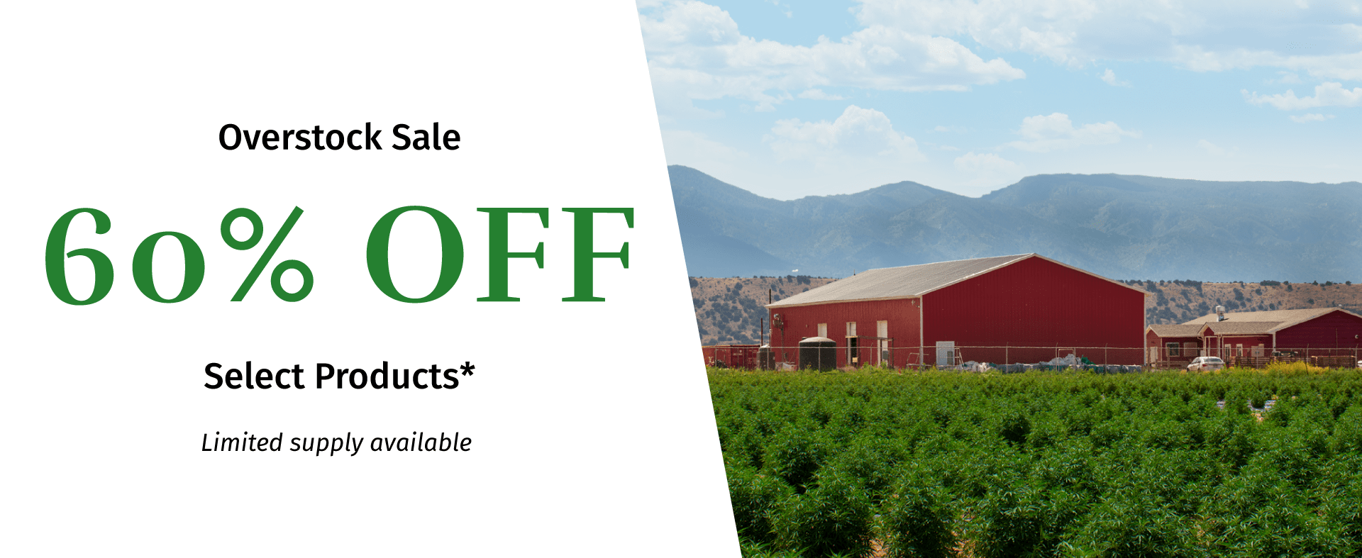 Overstock Sale For Selected Products