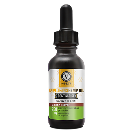 Bacon CBD Oil for Dogs